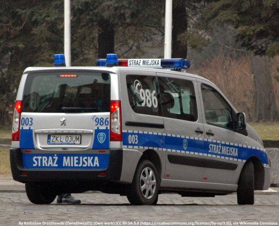 SM Gdańsk: Konar wisiał w powietrzu